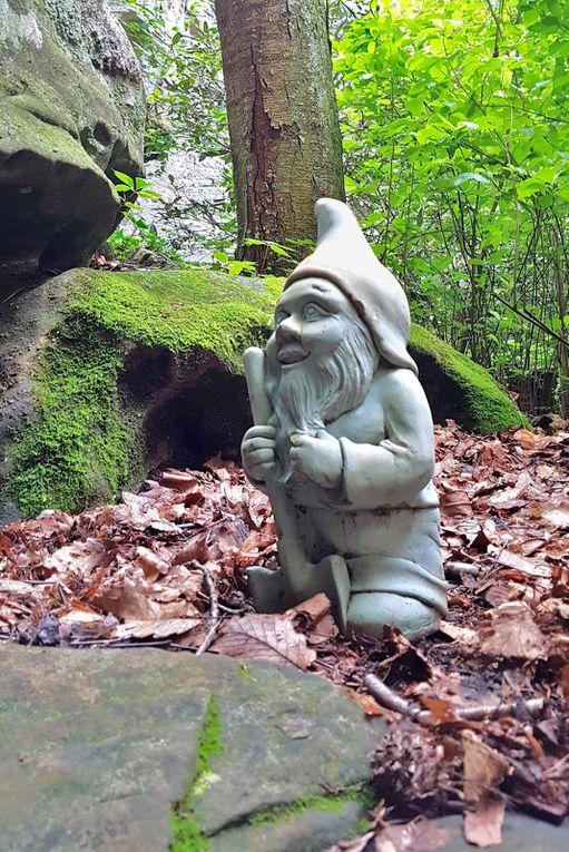 Diaporama : les gnomes de Rock City Gardens