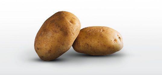 L'instant néerlandais du jour (2018_03_14): de aardappel
