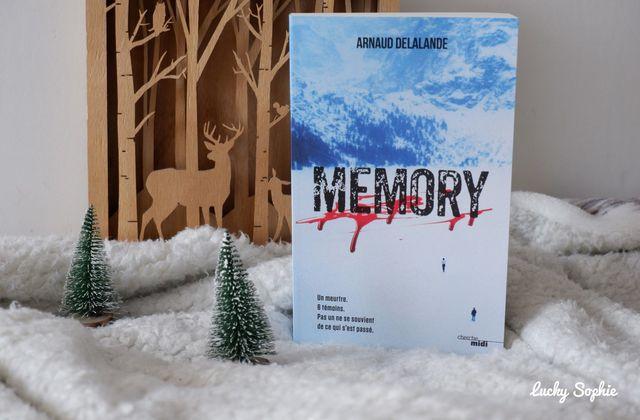 Memory, polar chez les amnésiques !