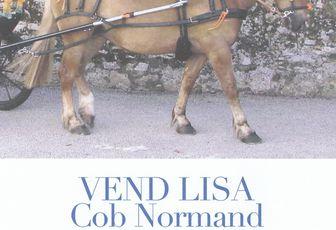 Une Cob Normande à vendre