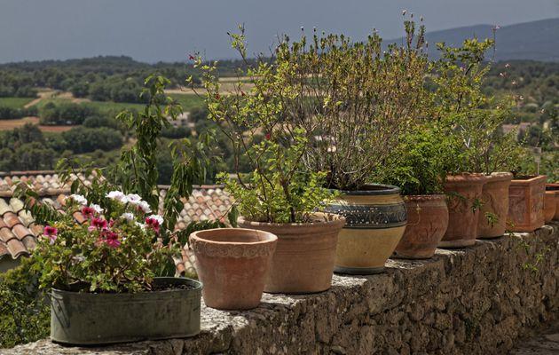 Grambois  Haute-Provence