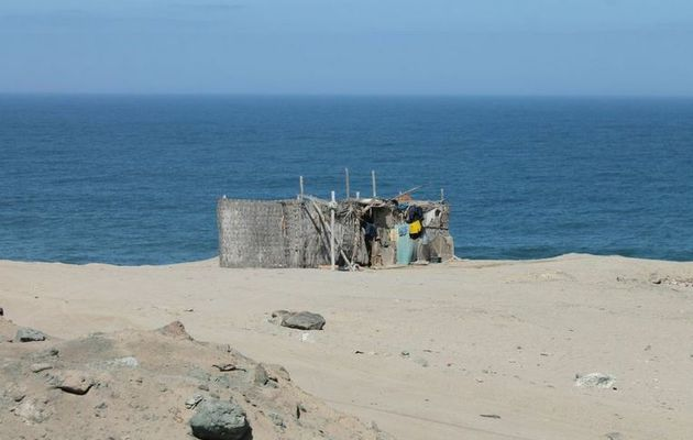Changement climatique - l'acidification des océans toujours plus rapide
