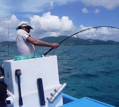 Mayotte ; back to the hunt !