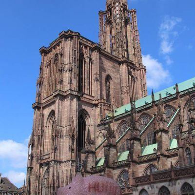 Cochonou à Strasbourg