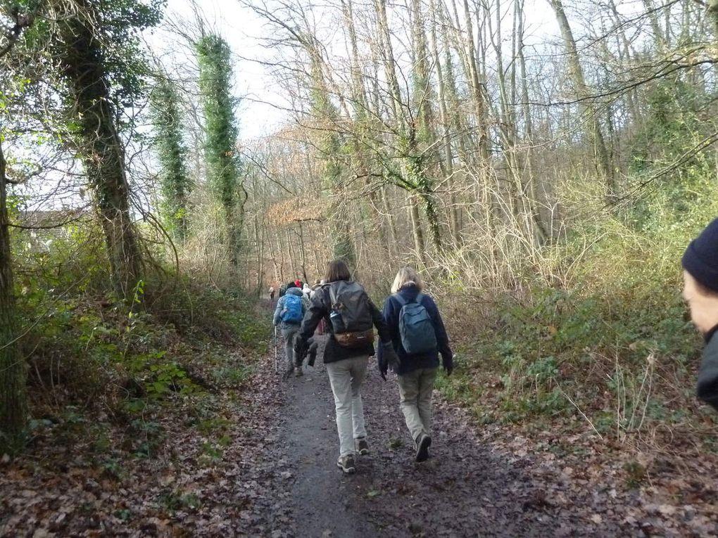Randonnée de Saint-Rémy-les-Chevreuses à Gif-sur-Yvette - 16,5 km.