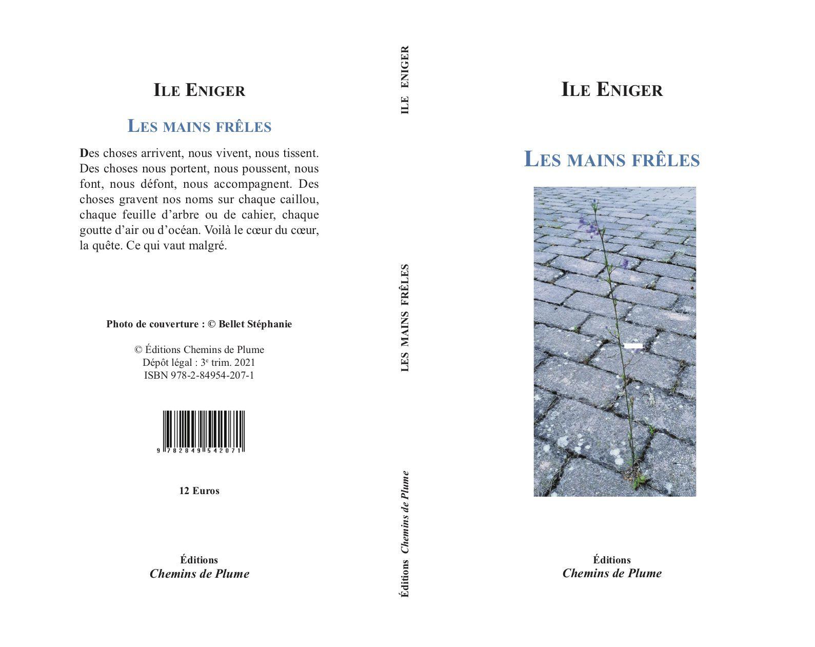 """Mon nouveau livre de textes poétiques, """"Les mains frêles"""" vient de paraître. Je le présenterai au Festival du Livre de Nice les 17, 18, 19  septembre 2021. Vous pouvez le commander sur le site des Éditions Chemins de Plume ou en librairie."""