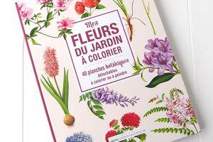 Herbier Larousse, Fleurs du Jardin à colorier, 40 Planches Botaniques