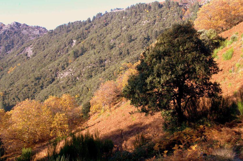 Paysages de la boucle du Mont Aigoual