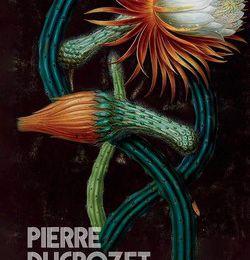Le grand vertige - Pierre Ducrozet