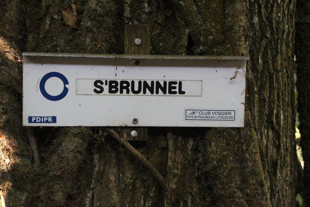 Le circuit des lavoirs de Phalsbourg 2