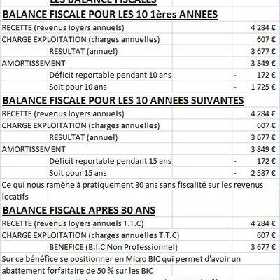 EXEMPLE D'ILLUSTRATION (BALANCES FISCALES)