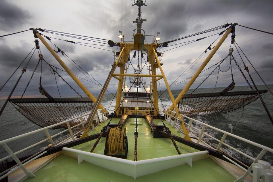 Environnement – L'Union européenne interdit la pêche électrique