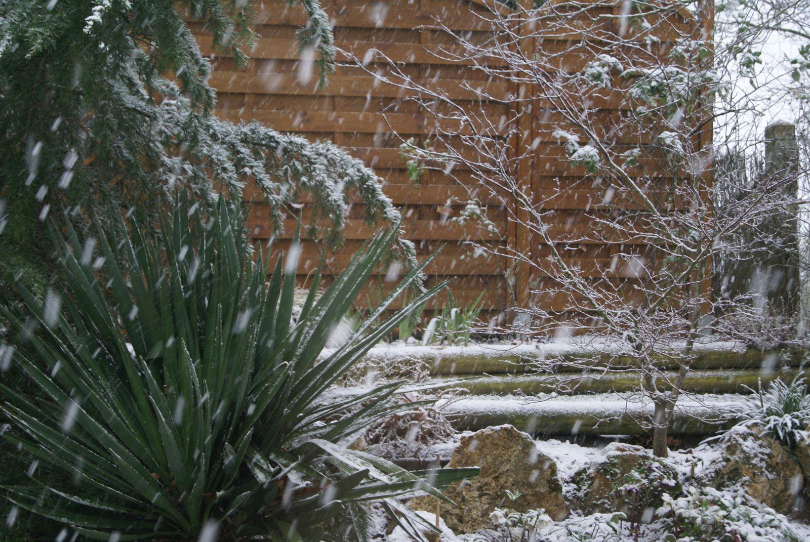 La neige (Pour Alma)