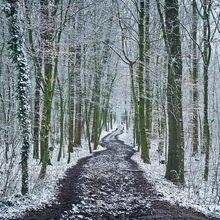 Il neige sur Esneux