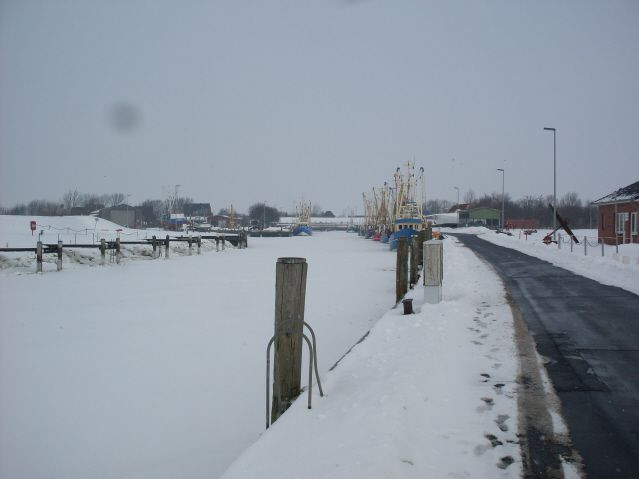 Album - Winter-2010