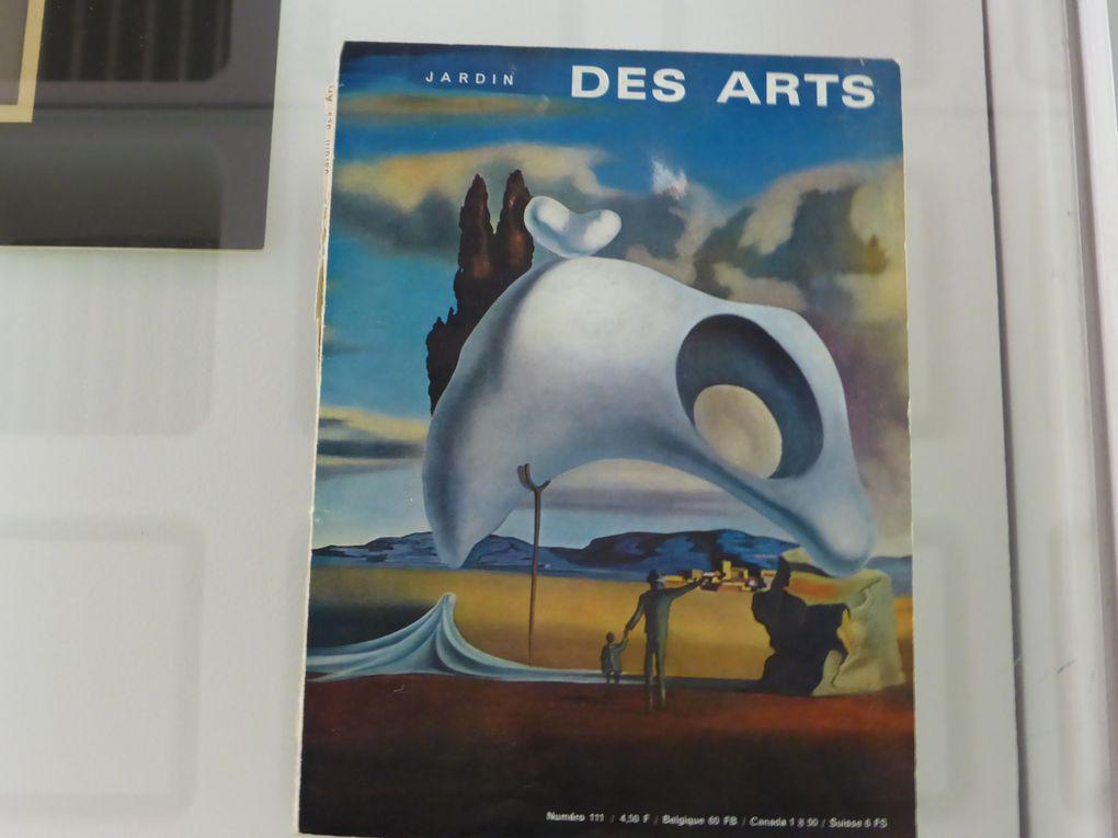 L'aventure d'une passion / Gilbert Delaine © Photographies Le Curieux des arts Gilles Kraemer, présentation presse, 2014