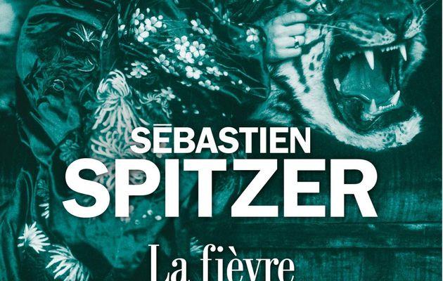 Rentrée littéraire 2020 (3) : La fièvre de Sébastien Spitzer