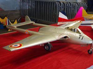 Voici quelques modèles qui ont retenu mon attention. En jaune magnique planeur Ka-8 de 6m d'envergure. En bleu l'hélicoptère EC-145 de la Gendarmerie. Puis deux DH-100 Vampire, un français et un anglais.