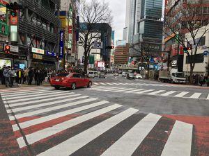 Tokyo Février 2018 #jour 9 - Shinjuku gyoen, goûter à shibuya