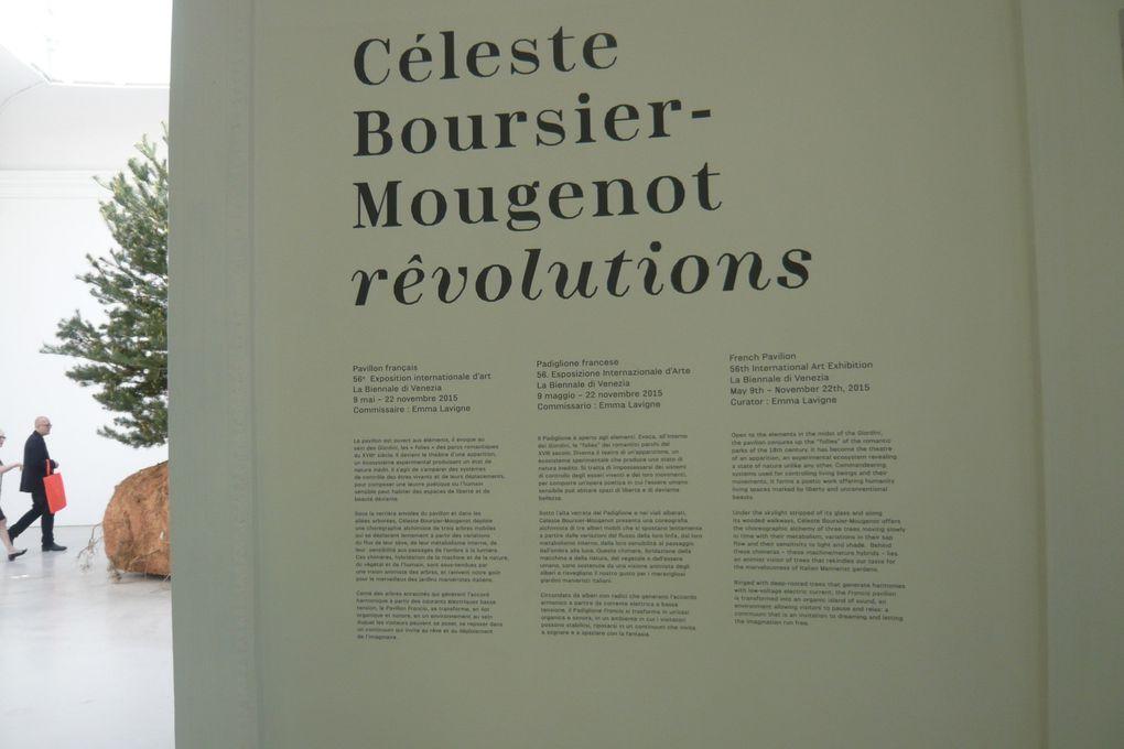 rêvolutions. Pavillon de France /// Canadassimo. Pavillon du Canada, Giardini © Le Curieux des arts Gilles Kraemer. 56ème exposition Internationale d'Art - la Biennale di Venezia. 7 mai & 27 octobre 2015
