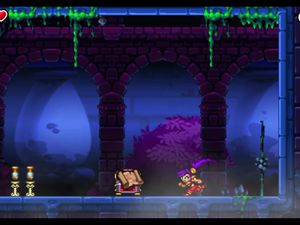 Shantae and the Pirate's Curse s'offre une version boîte