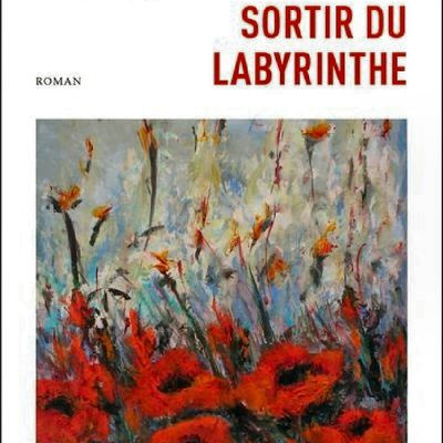 *SORTIR DU LABYRINTHE* Raymond Paul* Éditions Druide, collection Écarts* par Martine Lévesque*