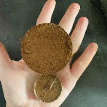 Premier essai de terreau de coco compact avec engrais intégré (pour la culture à l'extérieur)