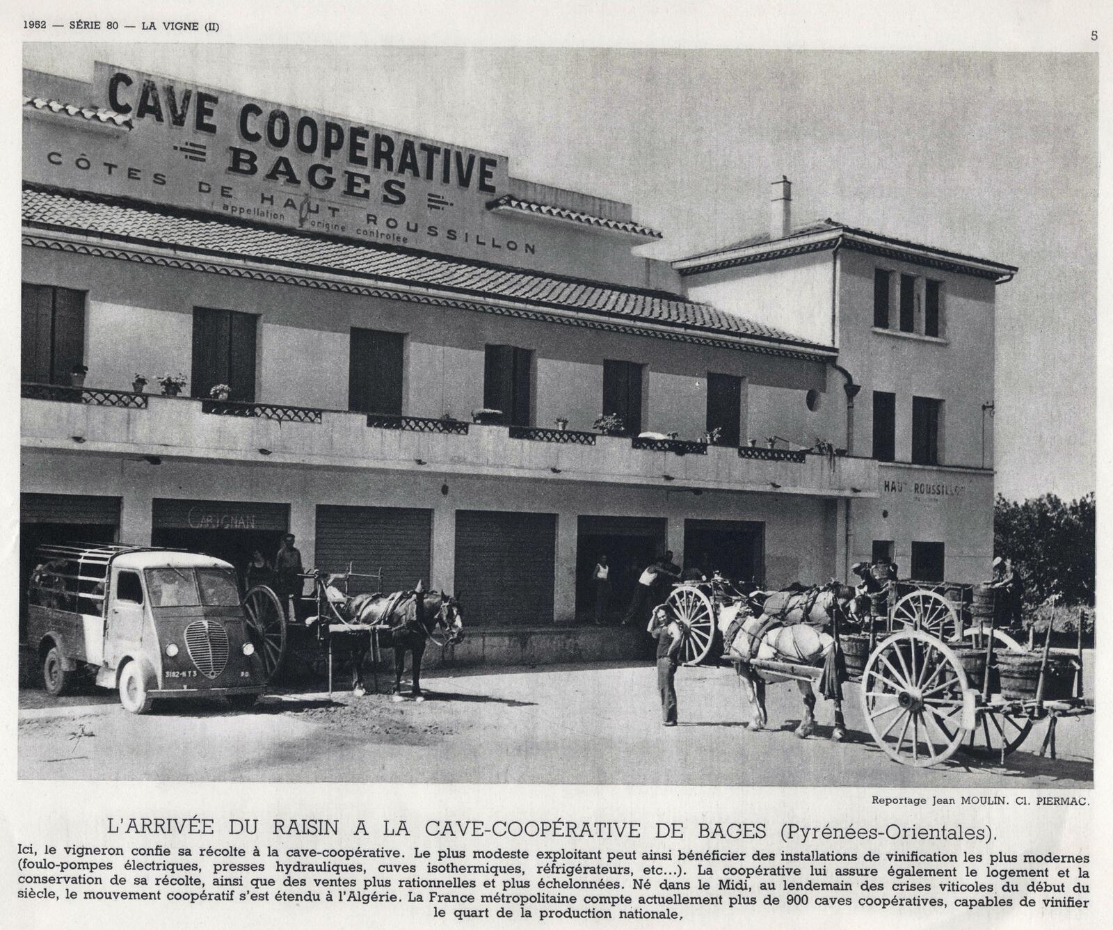 Cave coopérative de Bages (Pyrénées-Orientales)