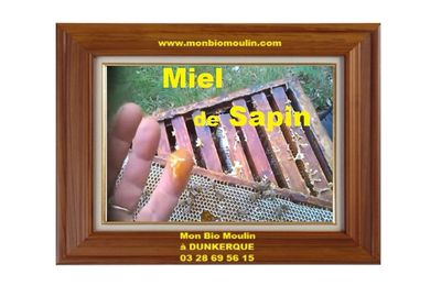 Miel de sapin à Dunkerque - Mon Bio Moulin à Dunkerque