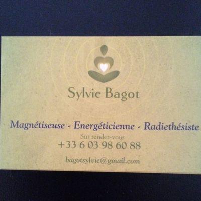 bagotsylvie-yod.10.overblog.com