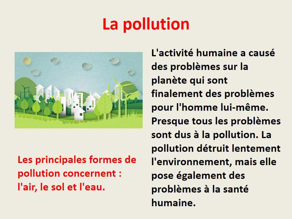 Environnement: Droits et obligations des citoyens