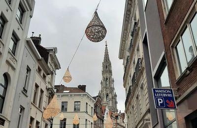 Vue hivernale de Bruxelles