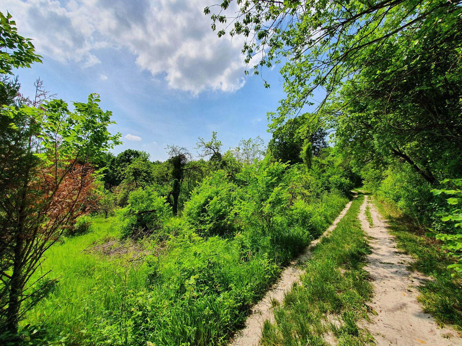 La Via Francigena entre Vitry-en-Perthois et la N 44