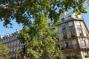 Flaner dans Paris 2 (31 juillet 2020)
