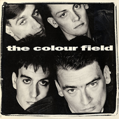 The Colourfield