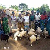 Lutte contre la malnutrition - Lianes coopération
