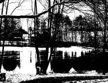 Les étangs sommeillent