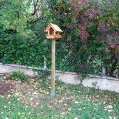 Aménager un endroit dans votre jardin pour nourrir les oiseaux - Jardins VOLPETTE