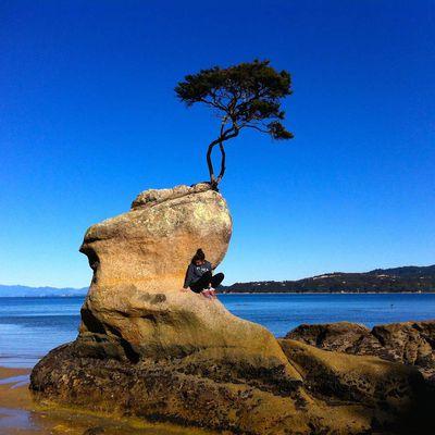 Road rip 16th day: Abel Tasman