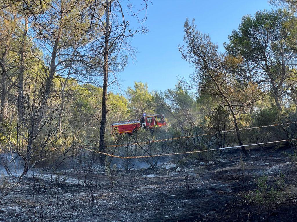 Bouches du Rhône: Feu de forêt à Meyreuil
