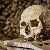""""""" Après la peste noire, la société médiévale n'a pas tiré les leçons """""""