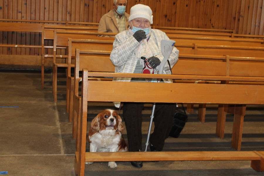La messe à St François de Montmorency avec la bénédiction des animaux
