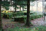 Le site archéologique du Wasserwald