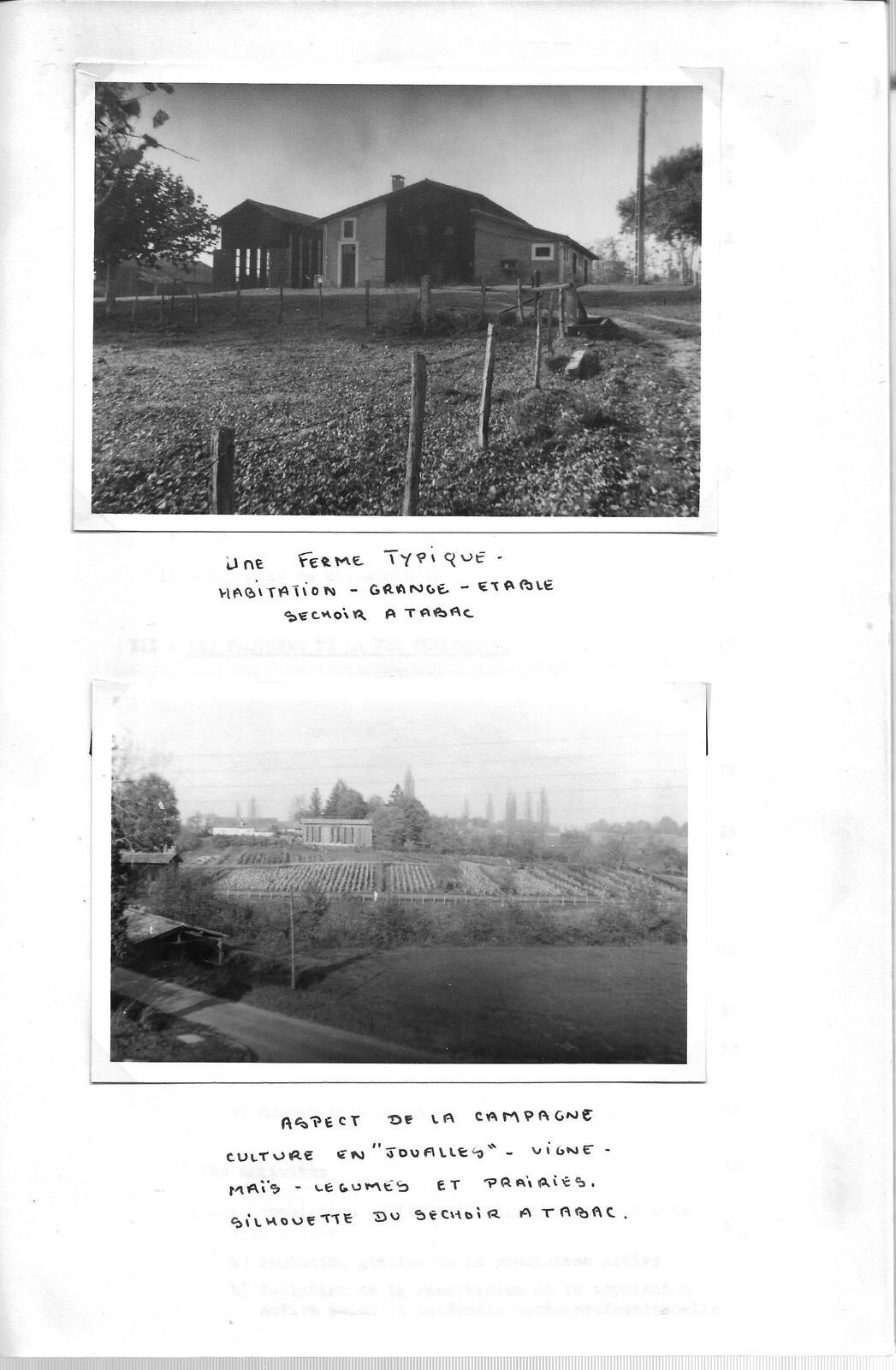 Histoire urbaine de Bazas