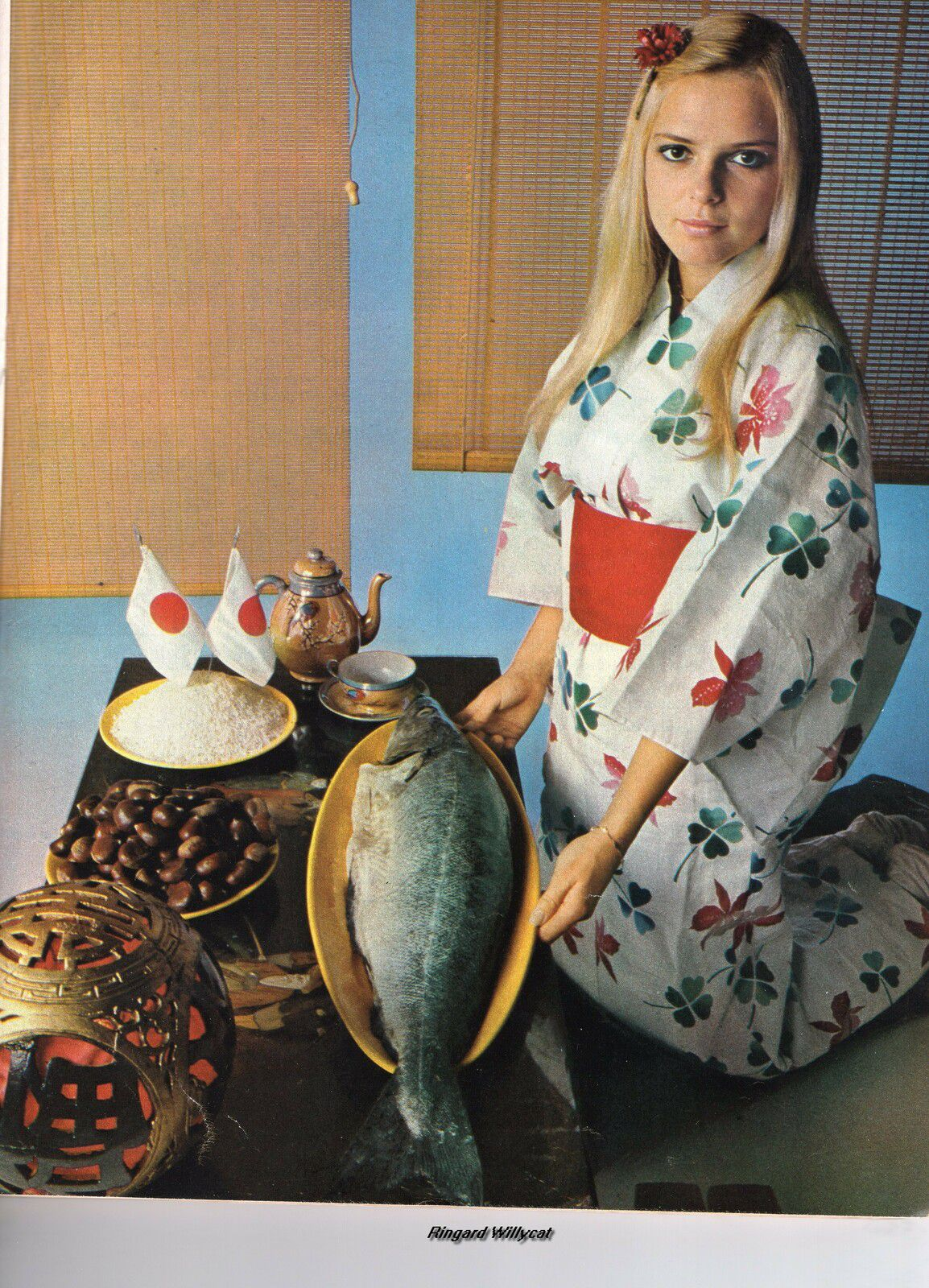 FRANCE GALL MADE IN JAPAN