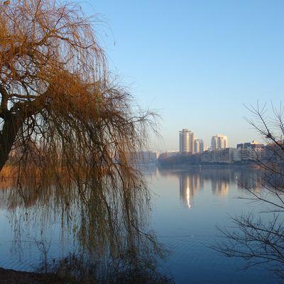 lac de Créteil - lever du jour hivernal