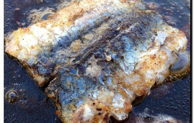 Filets de sardines au citron à la plancha