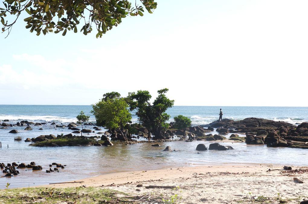 La plage de Mahambo, Madagascar