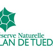 La réserve naturelle nationale du Plan de Tuéda | Parc national de la Vanoise