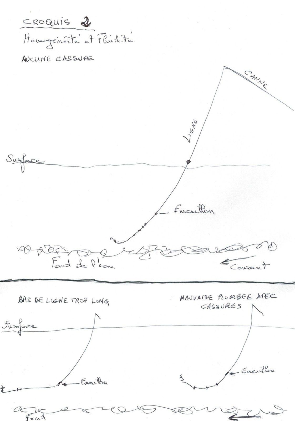Croquis d'une ligne par Pierre Sempé